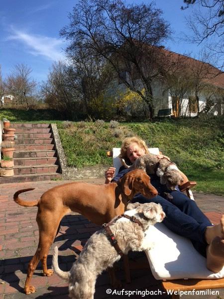 große Hunde mag ich sehr, bin ich ja auch gewöhnt